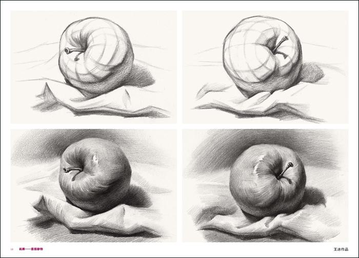 2017新书创视界美术画库素描静物 单体训练结构明暗对照试题范画