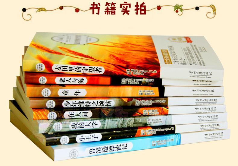 中小学教辅 黑板报/手抄报 中学生必读课外书名著全套8册 麦田里的