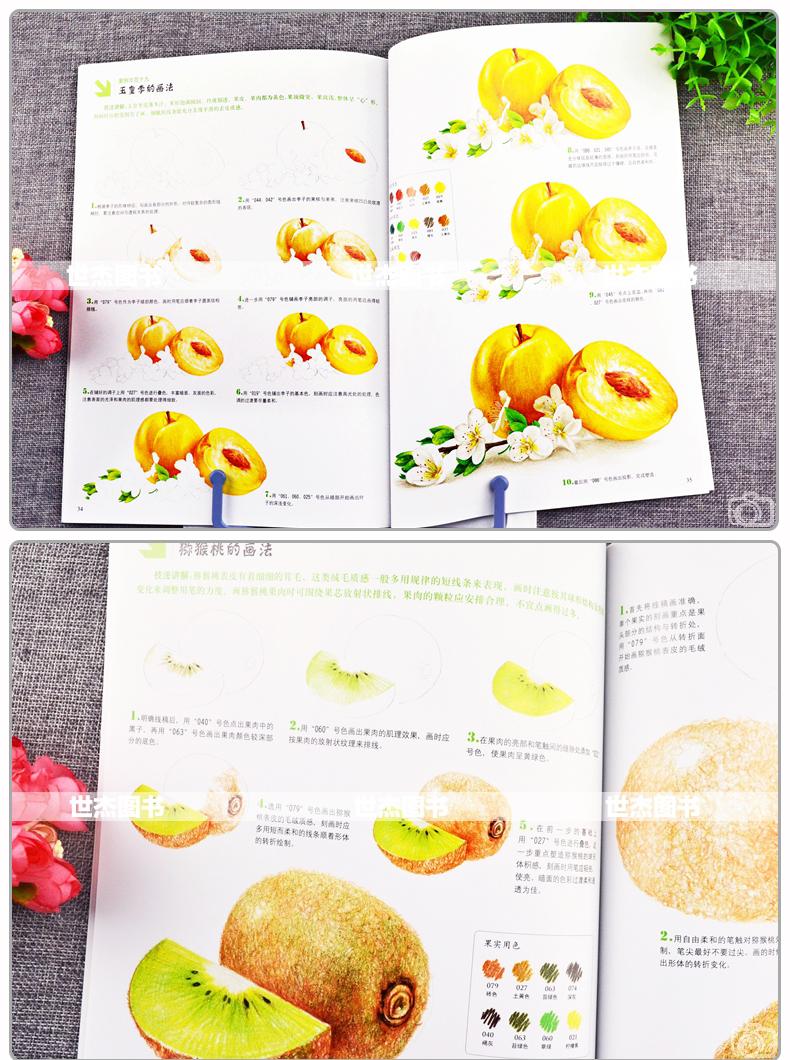 正版彩色鉛筆畫教程全套4冊美麗花草水果動物彩鉛畫入門自學零基礎