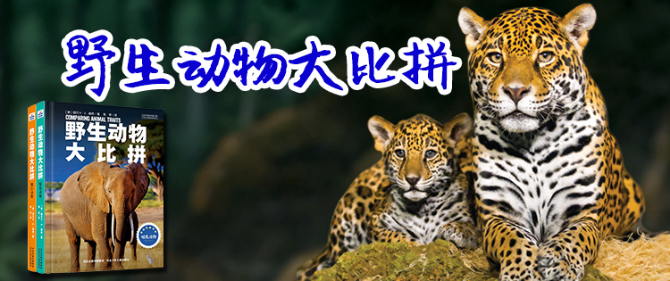 野生动物大比拼