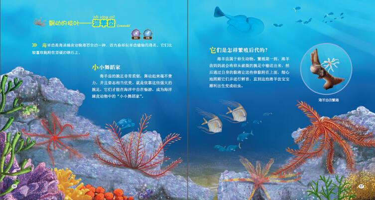 我爱海洋生物(全套共8册)