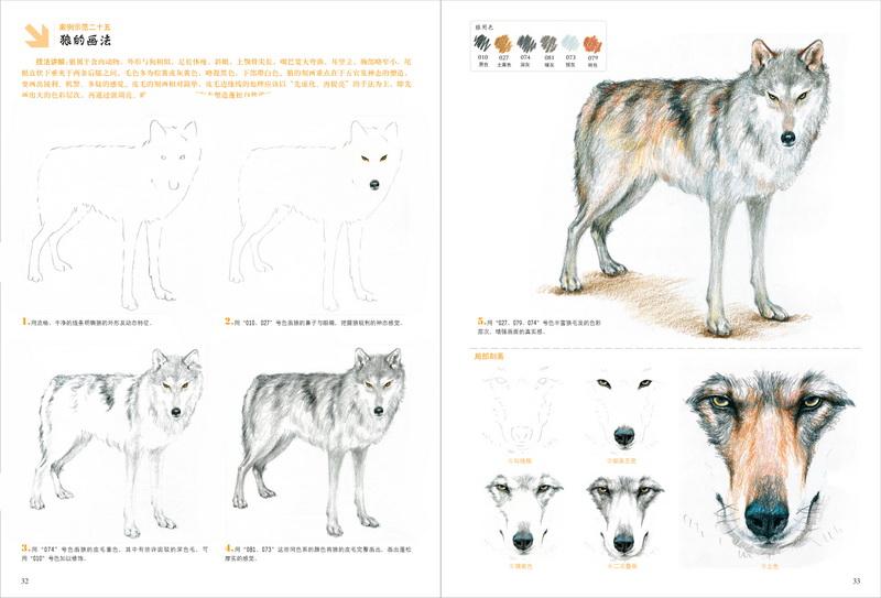 彩色铅笔画·萌宠动物绘