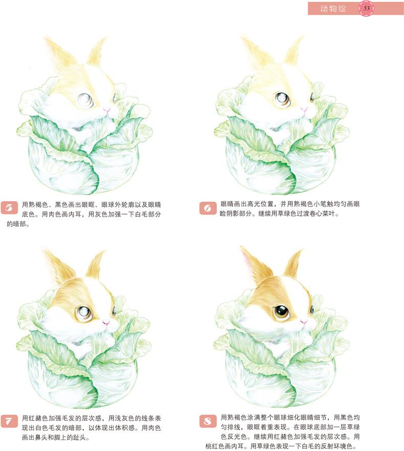 动物绘——30种萌宠动物的色铅笔图绘