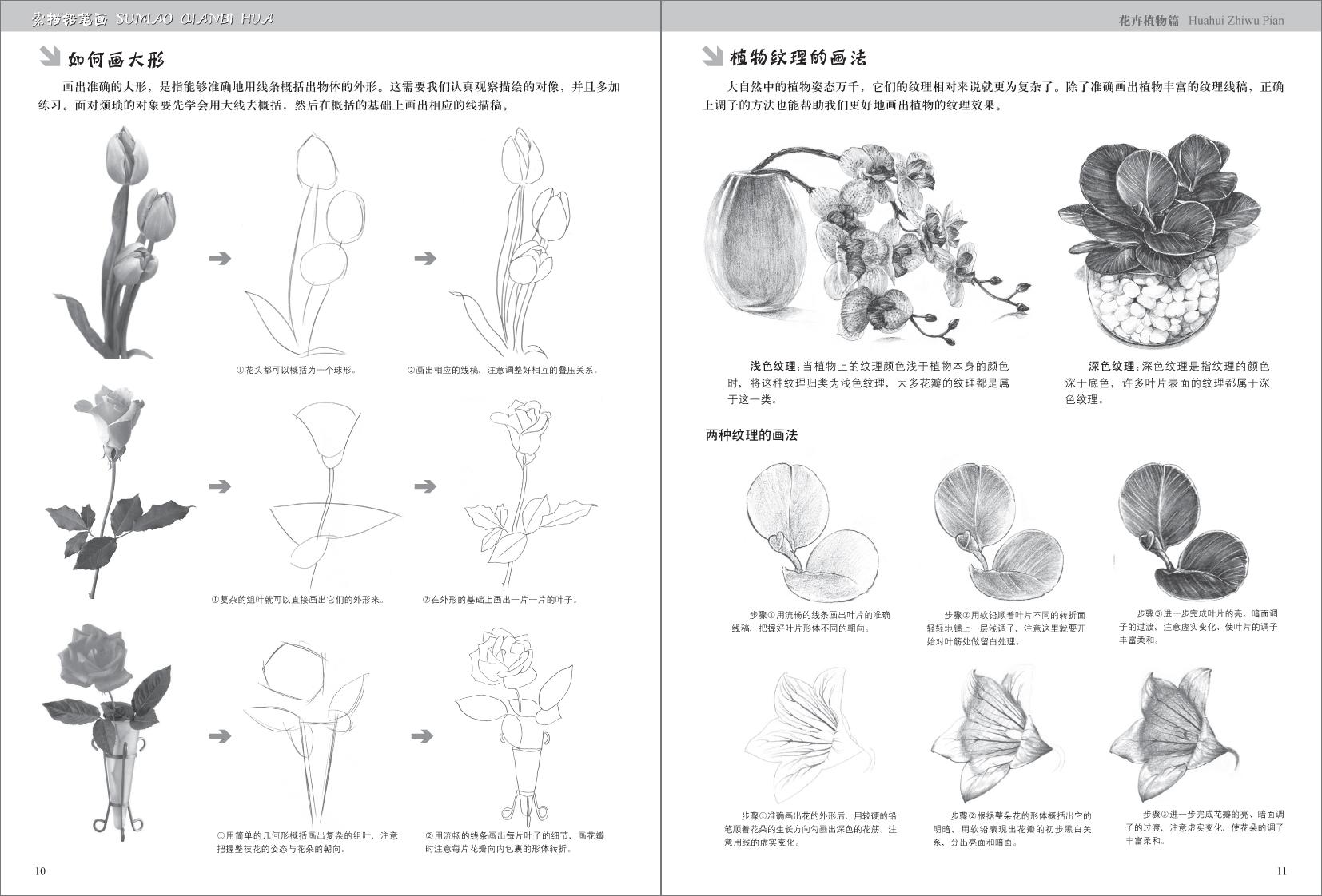 想要记录世间的美好并非只能用相机,一支笔,一张纸,便可以画出花花世界。本书收录了大量花卉植物案例,用明白流畅的语言将结构、明暗、透视、构图等技法一点点细细道来,帮助读者全面领悟铅笔素描的方法与技巧,即使零基础的读者也可以轻松上手。