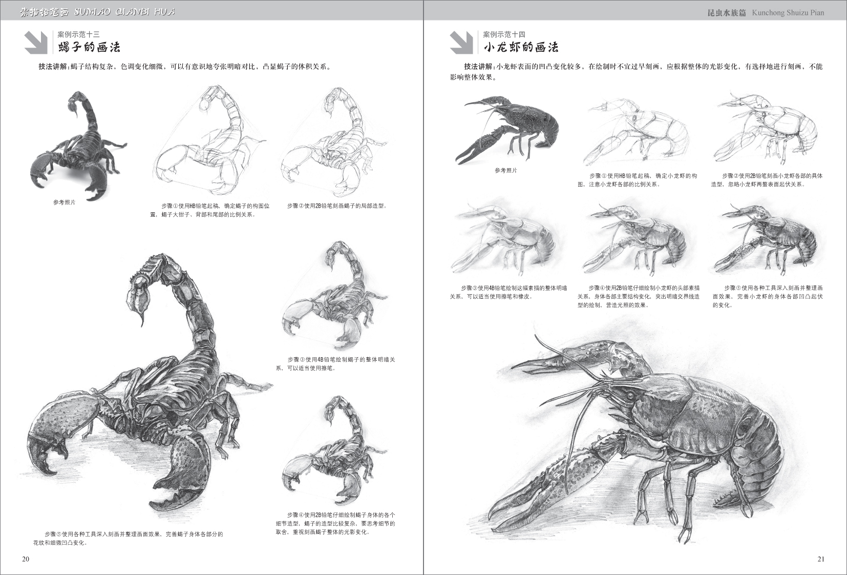 各式各样的昆虫水族总会以不同的方式与我们不期而遇,你是否想过用一支笔画出它们的可爱模样和美丽光影?本书选取了生活中常见的昆虫和水族,以详尽的步骤一一展开讲解,帮助读者全面领悟铅笔素描的方法与技巧。快快拿起笔吧,画出自己心目中的昆虫手绘!