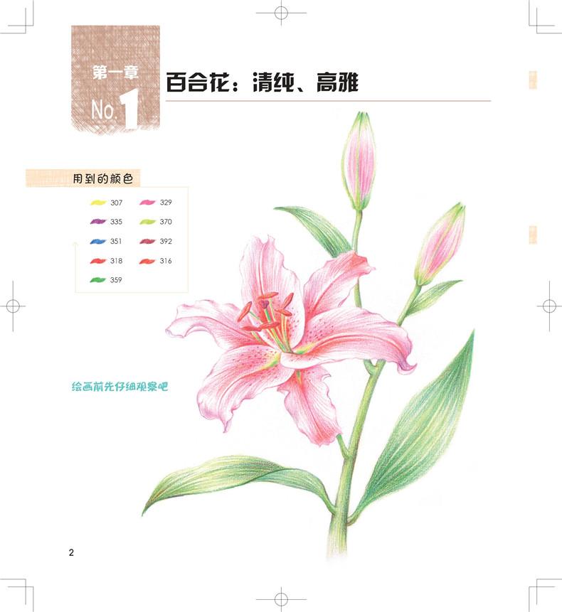 恋上手绘 花草之美44帧-色铅笔绘画实用教程 9787122275783 化学工业