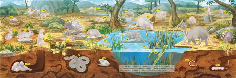 地下藏的-动物创意泡泡贴 9787122274007 化学工业出版社 沐渔文化 绘